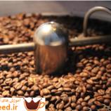معرفی قهوه های تخصصی